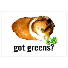 Got Greens