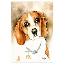 Classic Beagle