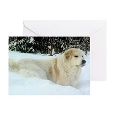 Great Pyrenees Greeting Card - SnowPyr