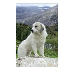 Pyr Mountain View Postcards (8 pack)