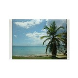 bluebeards resort beach Rectangle Magnet