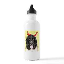 FPG Xmas Dogs II Newfie - Water Bottle