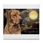 Moonlit Ridgeback Tile Coaster