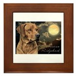Moonlit Ridgeback Framed Tile