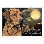 Moonlit Ridgeback Small Poster