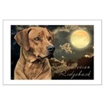Moonlit Ridgeback Large Poster