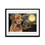 Moonlit Ridgeback Framed Panel Print