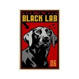 Obey the BLACK LAB! Retriever Magnet