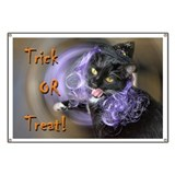 Trick-or-treat kitty-witch Banner