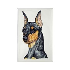 Miniature Pinscher Min Pin Rectangle Magnet