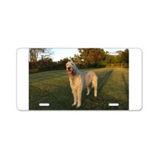 Smiling IRW Aluminum License Plate