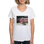 Ryukyu Shisa Women's V-Neck T-Shirt