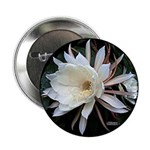 "Epiphyte Cactus Flower 2.25"" Button (10 pack)"