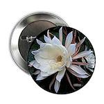 "Epiphyte Cactus Flower 2.25"" Button"