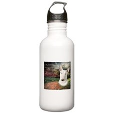 """Why God Made Dogs"" Bull Terrier Water Bottle"