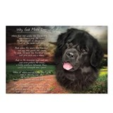 """Why God Made Dogs"" Newfoundland Postcards (Packag"