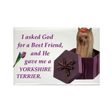 Unique Yorkshire sayings Rectangle Magnet (100 pack)