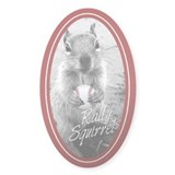 Rally Squirrel Signature St Louis Decal