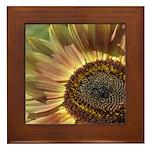 Autumn Sunflower Framed Tile