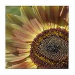 Autumn Sunflower Tile Coaster