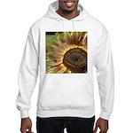 Autumn Sunflower Hooded Sweatshirt