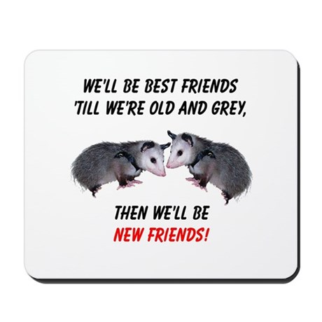 Old New Possum Friends Mousepad