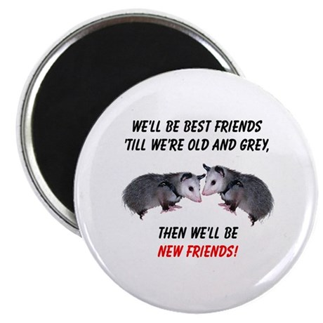 Old New Possum Friends Magnet