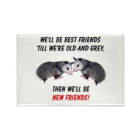 Old New Possum Friends Rectangle Magnet (100 pack)