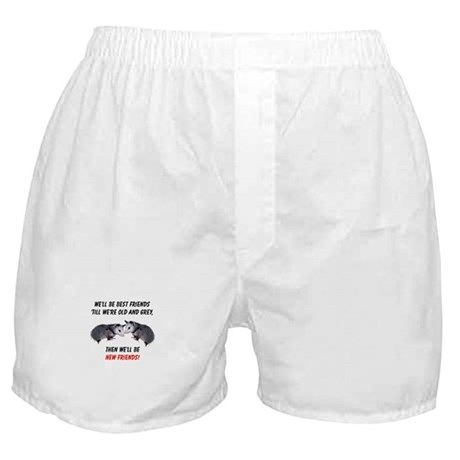 Old New Possum Friends Boxer Shorts