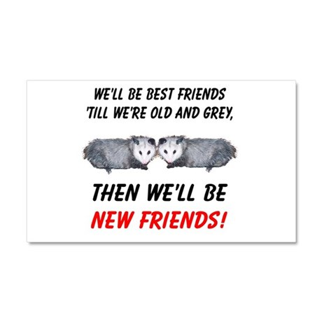 Old New Possum Friends Car Magnet 20 x 12