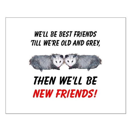 Old New Possum Friends Small Poster