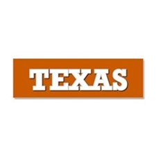 Texas Car Magnet 10 x 3