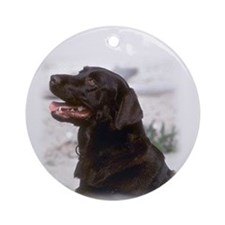 Black Labrador Ornament (Round)