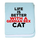 Crazy Cat iPad2 Case