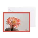 Orange Cactus Flower Greeting Cards (Pk of 10)