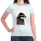 Bobwhite Quail Head T