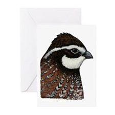 Bobwhite Quail Head Greeting Cards (Pk of 20)