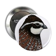 "Bobwhite Quail Head 2.25"" Button (100 pack)"