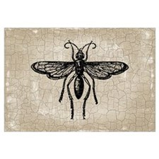 Funny Bugs and insects Wall Art