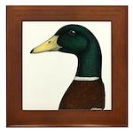 Mallard Drake Head Framed Tile