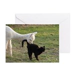 LET'S BE FRIENDS III™ Greeting Cards (Pk of 10)