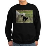 LET'S BE FRIENDS III™ Sweatshirt (dark)