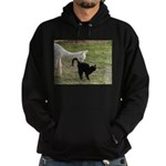 LET'S BE FRIENDS III™ Hoodie (dark)