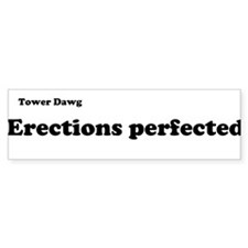 Erections Perfected (Bumper)