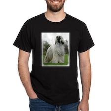 Afghan Hound 9Y247D-025 T-Shirt