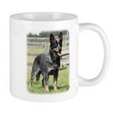 Australian Cattle Dog 9Y749D-017 Mug