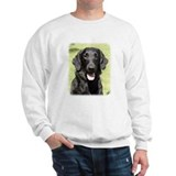 Flat Coated Retriever 9Y040D-040 Jumper