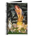 Fairies & Boxer Journal