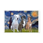 Starry / 3 Boxers 20x12 Wall Decal