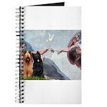 Creation / Briard Journal